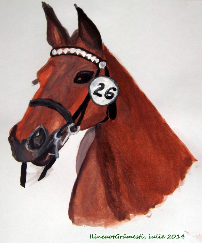 Horse Murgul2